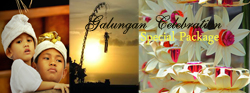 Exclusive Special Offer Bali Homestay