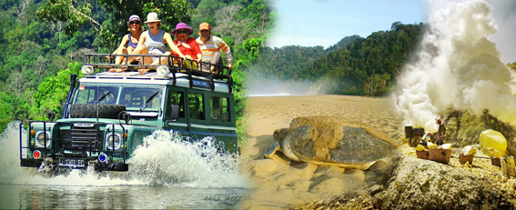 Bali Homestay with visiting Turtle Conservation and trekk Ijen